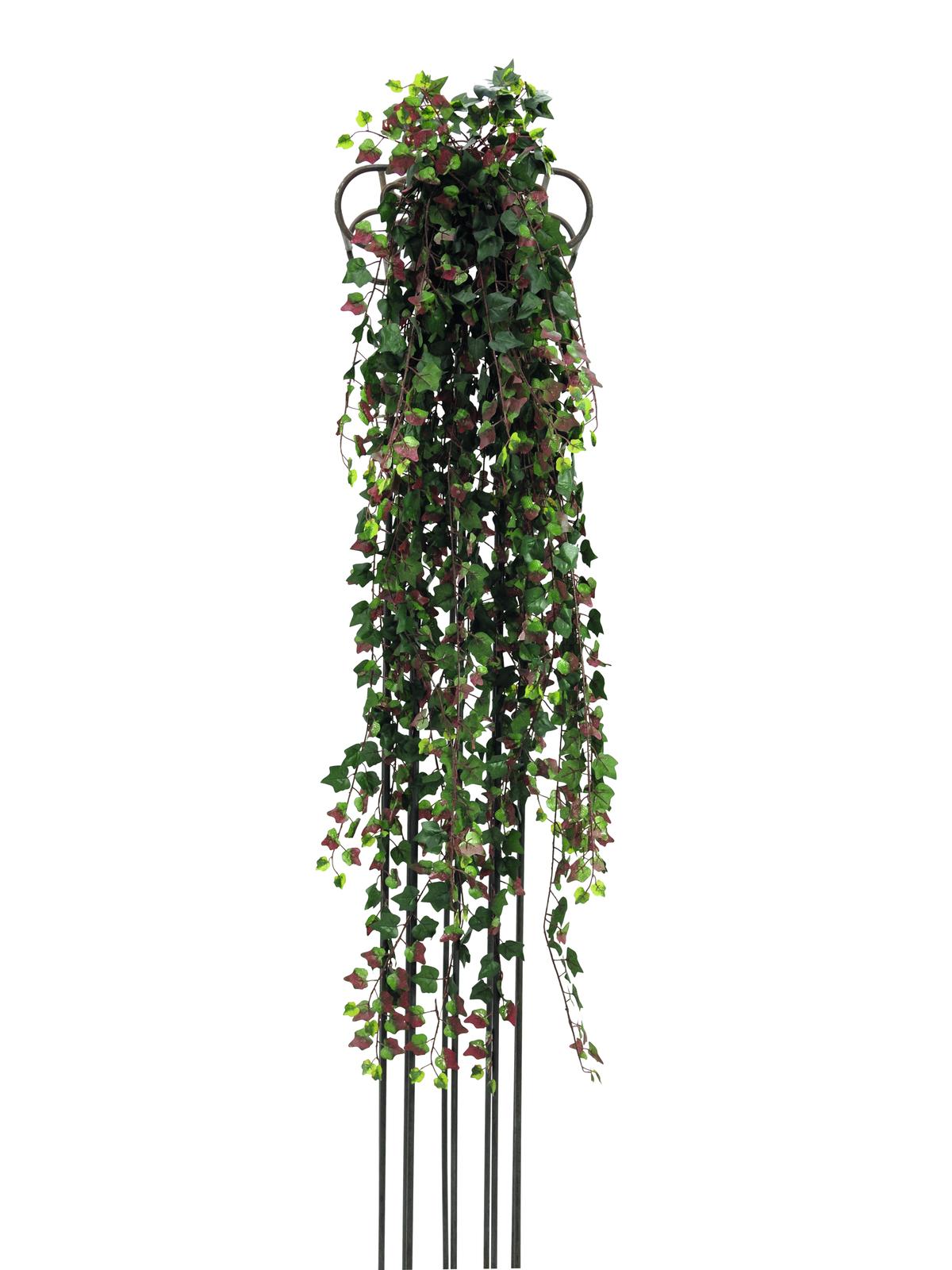 Šlahoun vínový břečťan Deluxe, 160 cm
