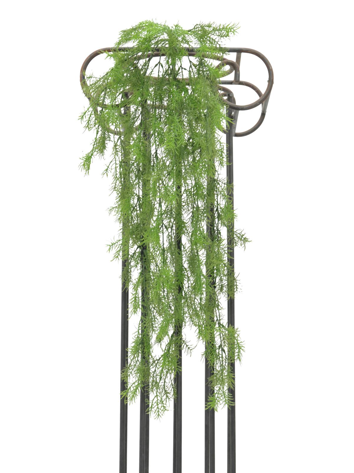 Korálová tráva, 78 cm