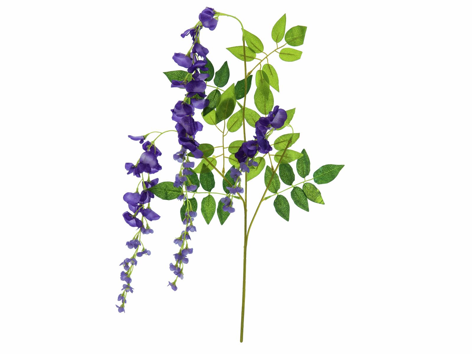 Větvička Vistárie, purpurová