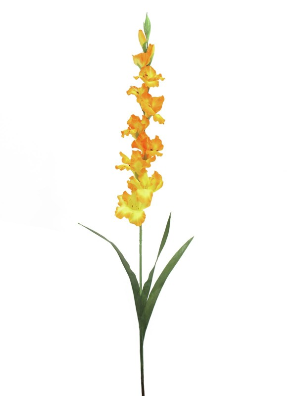 Gladiol větvička, oranžová, 90cm