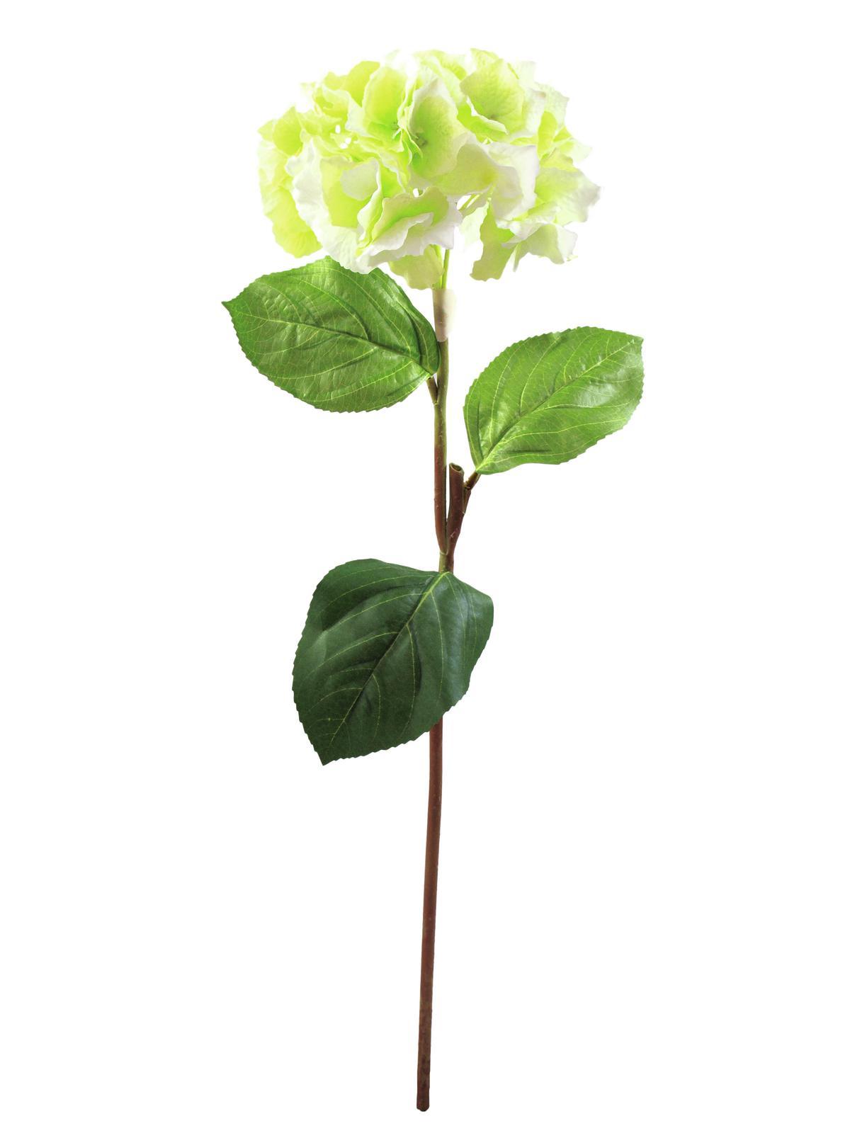 Hortenzie větvička zelená, 76 cm