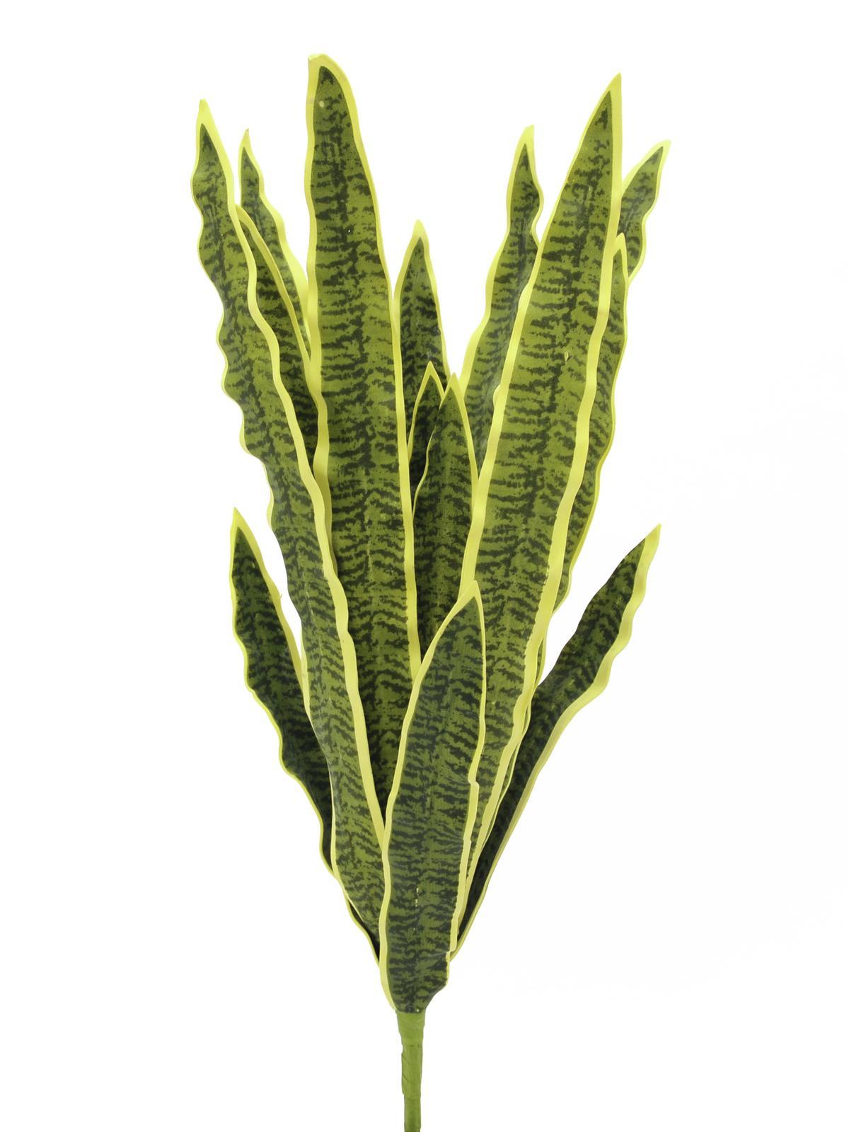 Tchynin jazyk, zeleno-žlutý, 74 cm