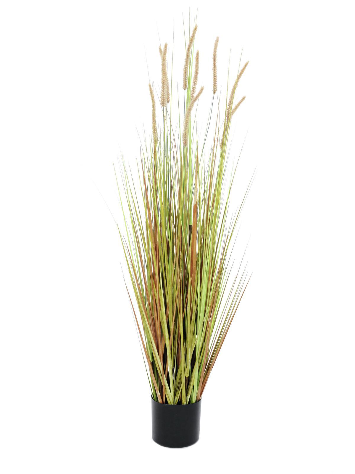 Vodní tráva v podzimních barvách, 120 cm