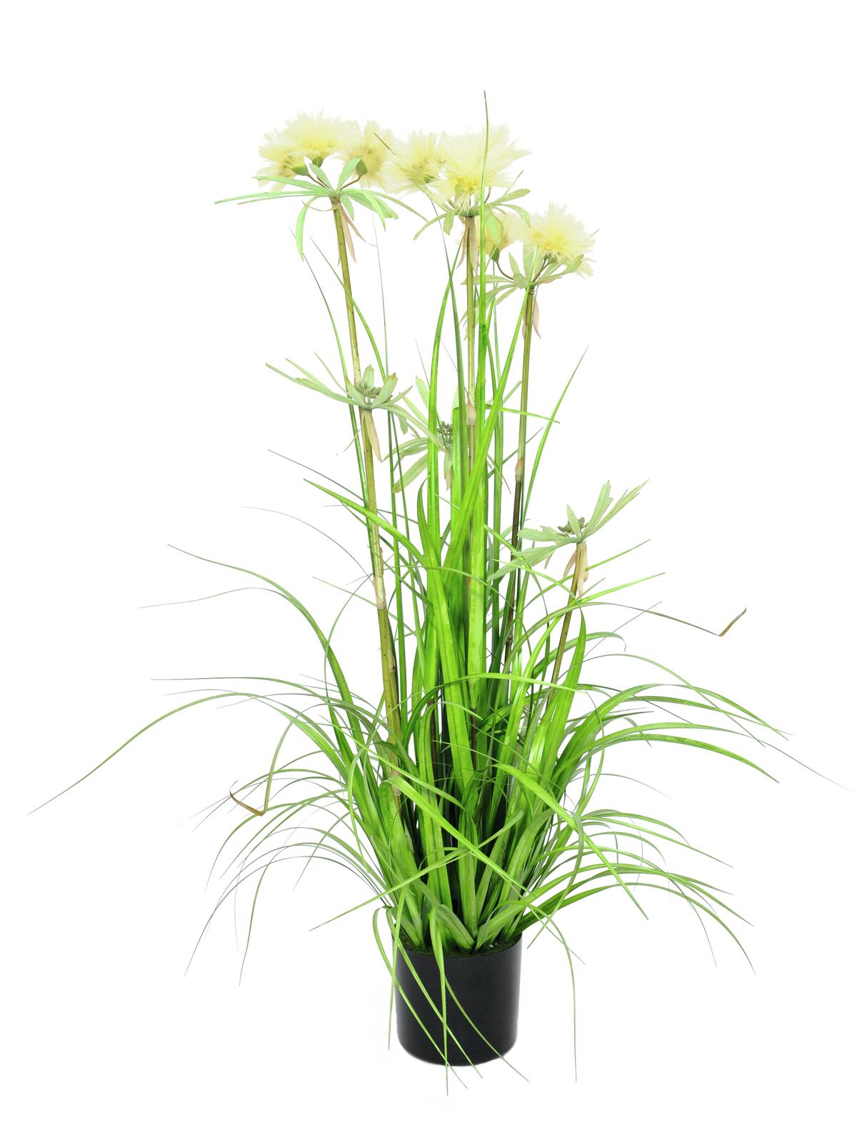 Jarní tráva v květináči, 120 cm