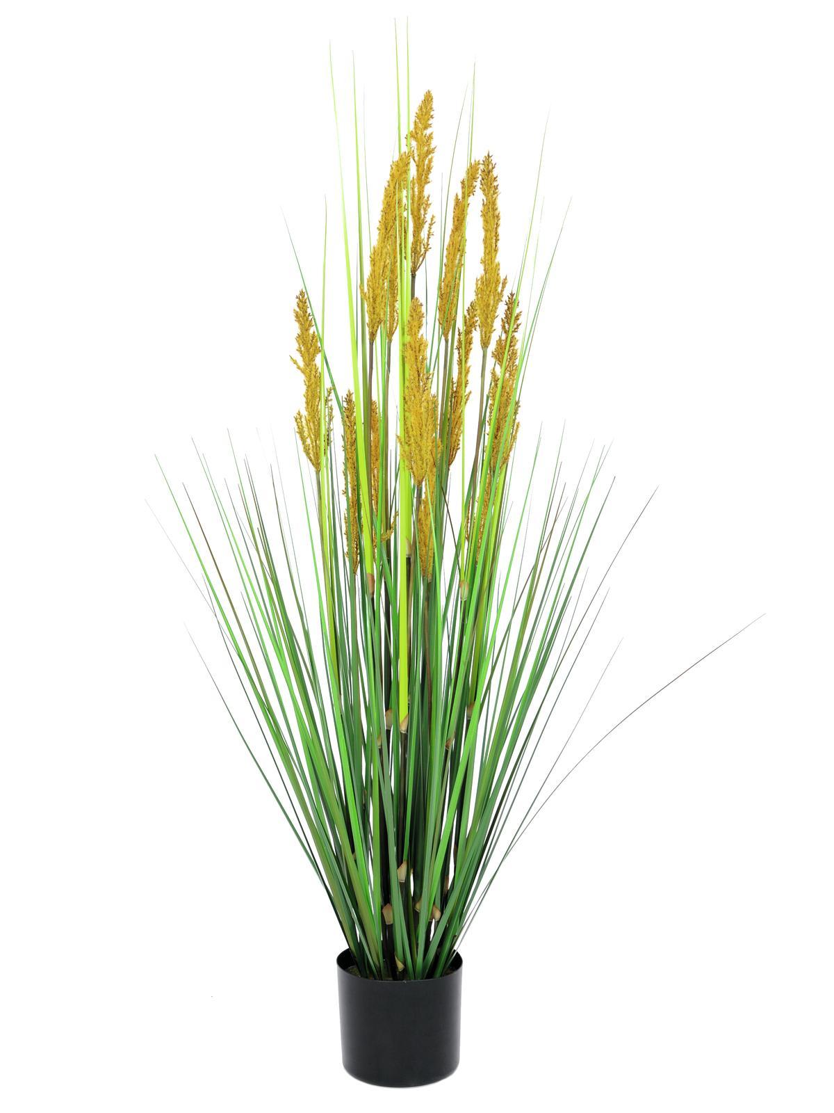 Polní tráva s klasy, 120 cm