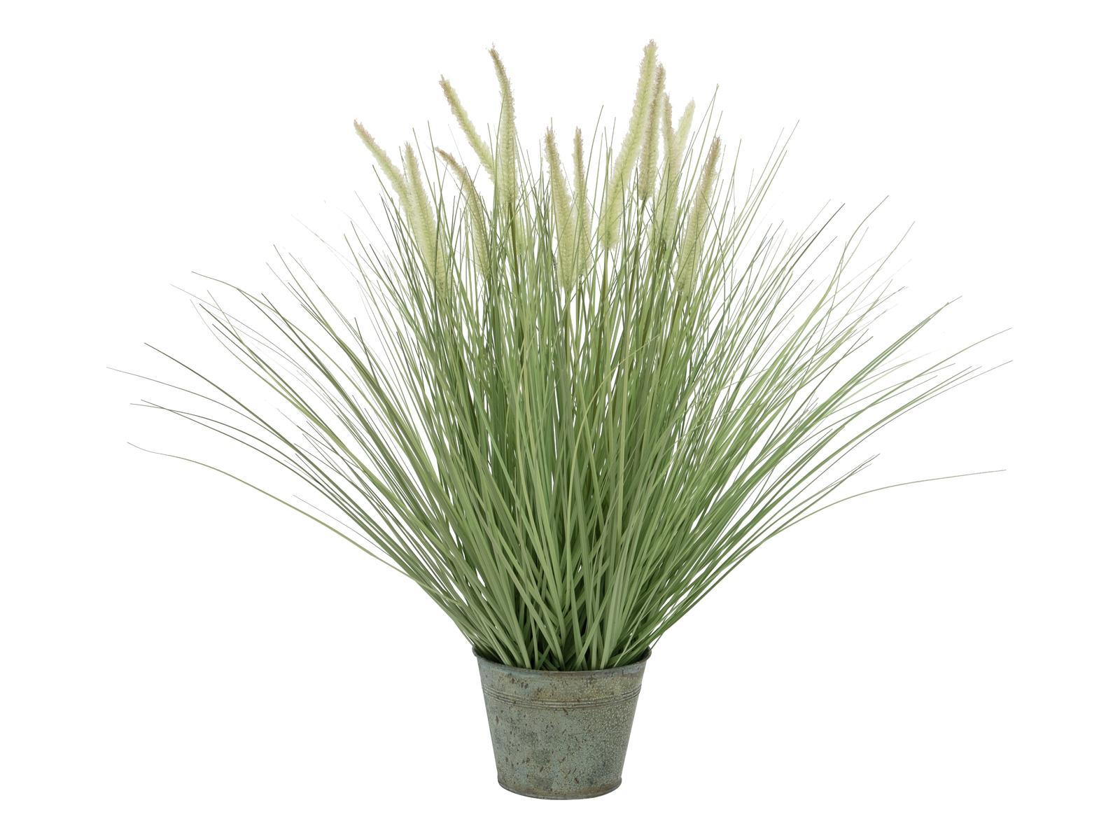 Tráva kvetoucí, malá, 70cm