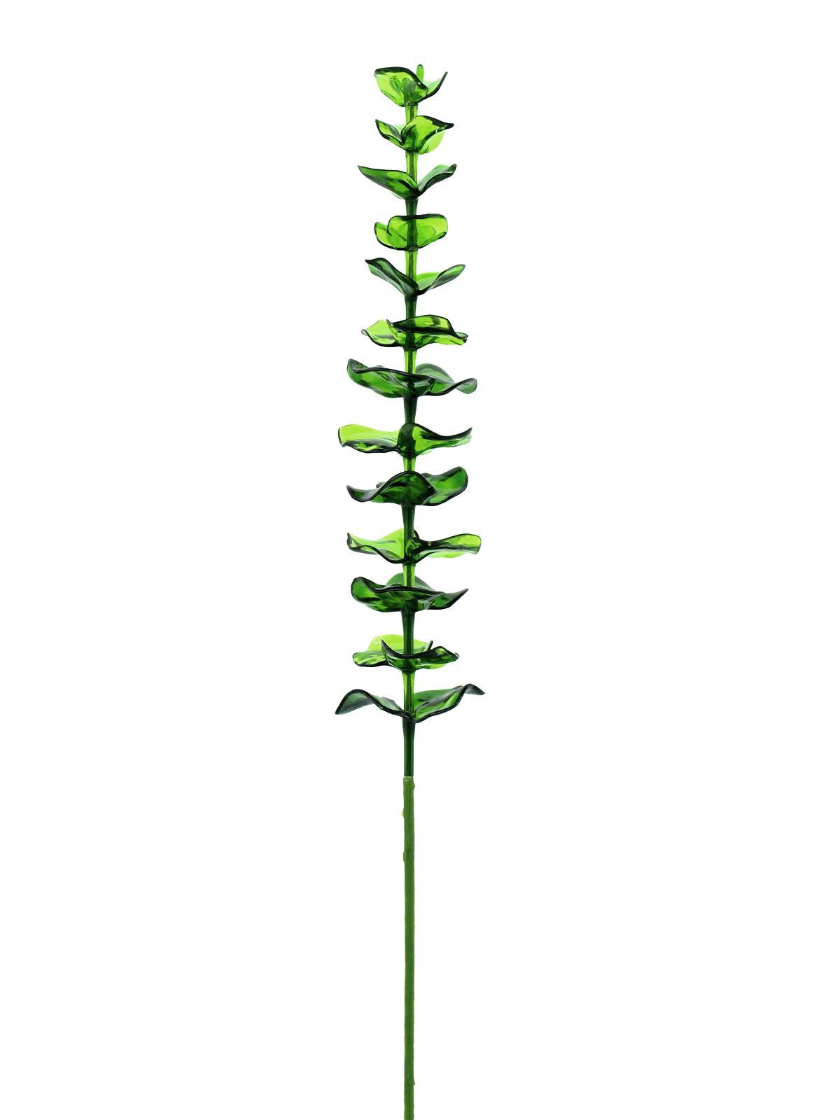Eukalyptus zelený - křišťálový, 81 cm, 12 ks