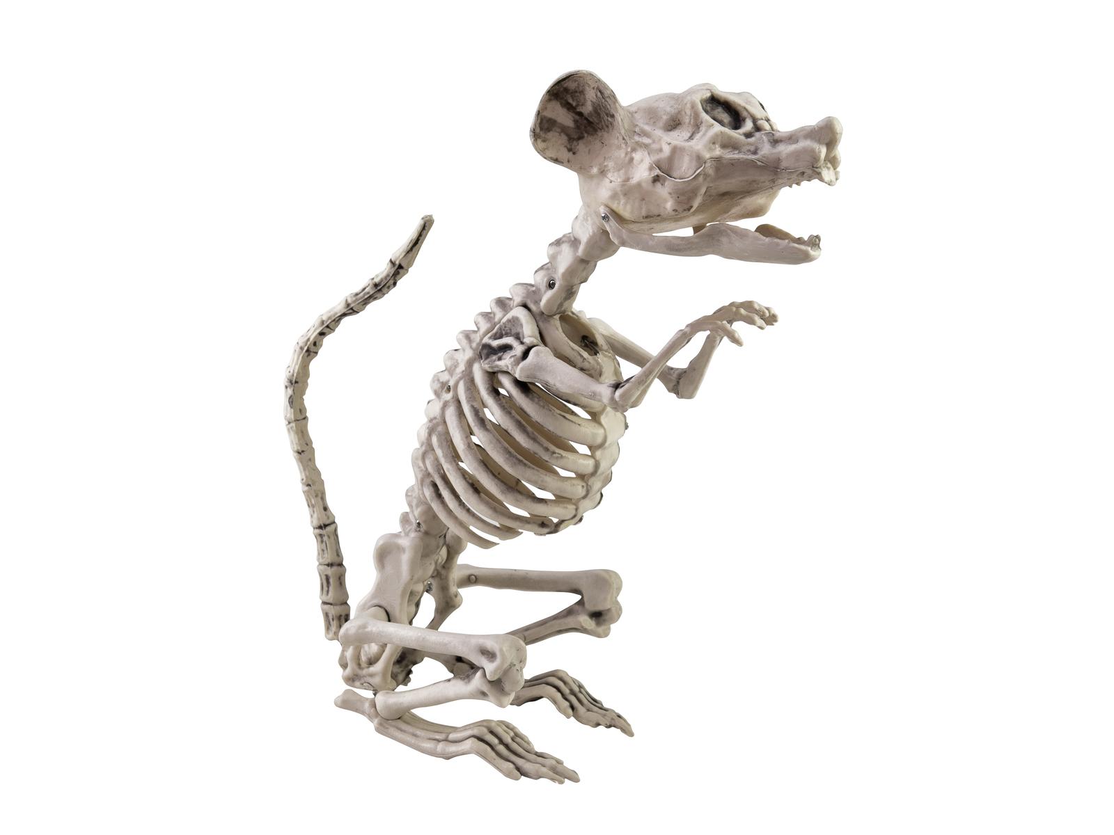 Halloween kostlivec krysy, 32cm